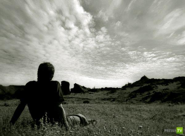 Истории, трогающие до глубины души