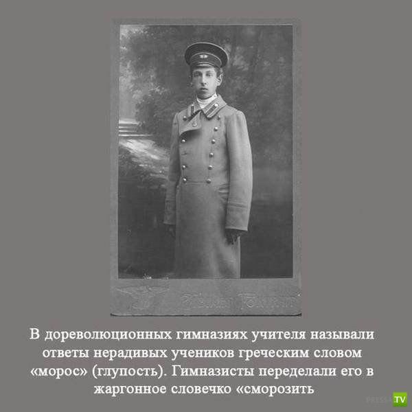 Интересные и познавательные факты о России (27 фото)