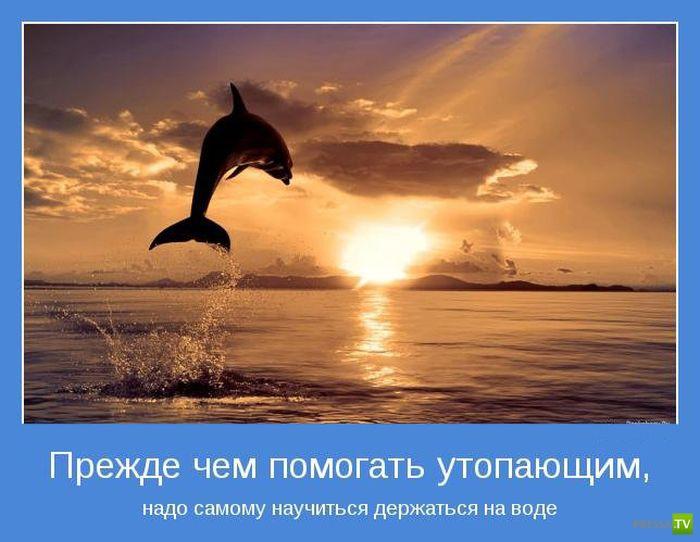 Мотиваторы на август (32 фото)