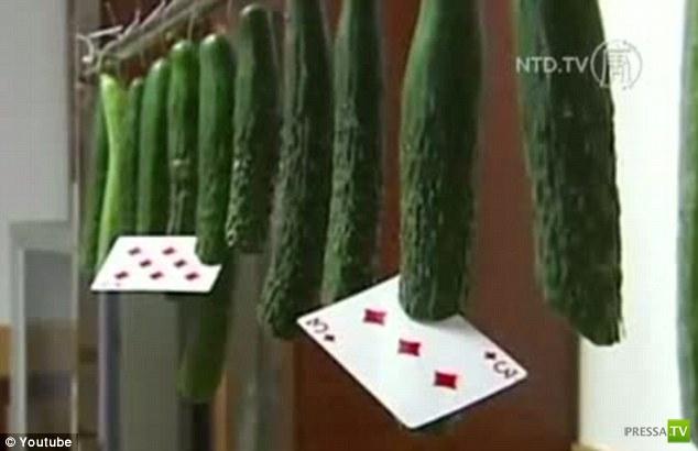 Рекордсмен по метанию пластиковых карт - китаец Тунсинь (4 фото)