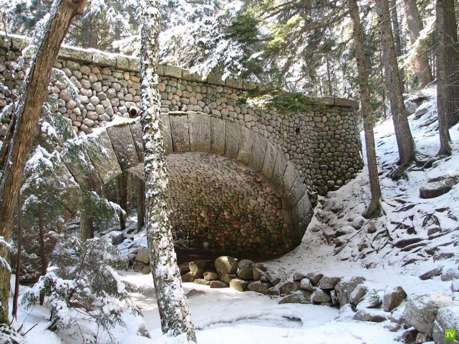 Национальный парк Акадия в США (15 фото)