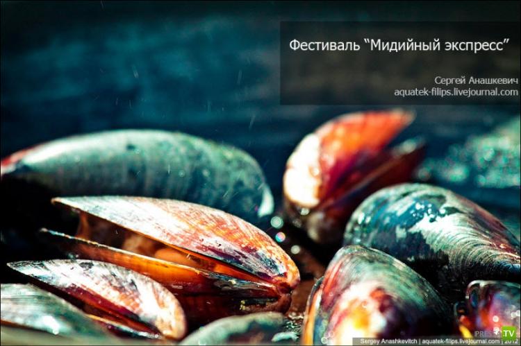 """Ежегодный гастрономический фестиваль """"Мидийный экспресс"""" в Севастополе (29 фото)"""