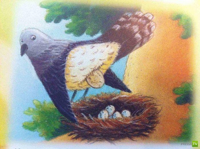 Детская энциклопедия для самых маленьких (10 фото)