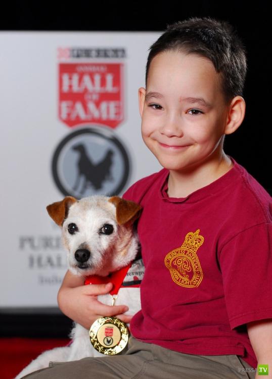 Мальчик решил выполнить желания своей умирающей собаки (3 фото + видео)