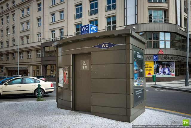 Туалетная проблема (12 фото)