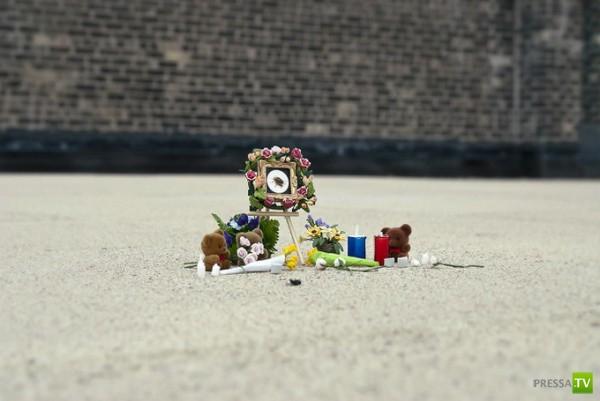 В американском Миннеаполисе с почестями устраивают могилки для насекомых (4 фото + видео)
