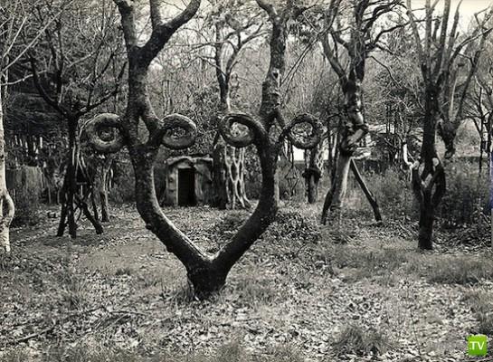 Секреты, унесенные в могилу (12 фото)