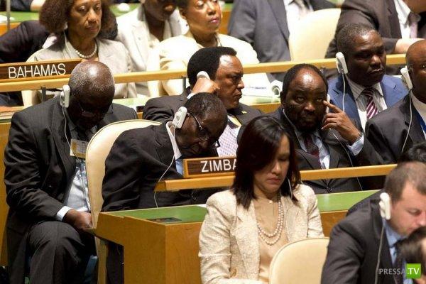 Заседания в ООН - как решают важнейшие проблемы нашей планеты (4 фото)