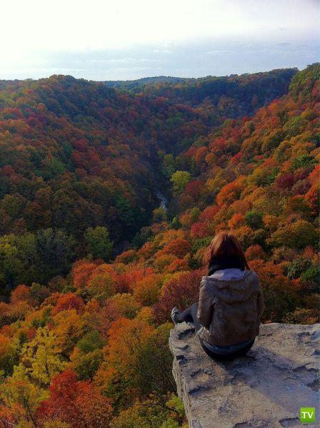 Прикольные фотографии, октябрь 12 (87 фото)