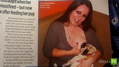 44-летняя домохозяйка Терри Грэм из Америки 2 года кормит грудью свою собаку...