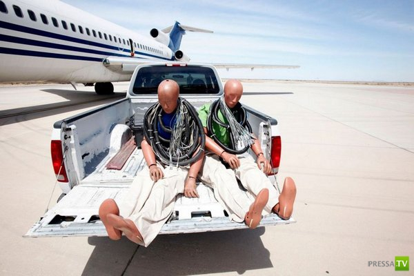 Какие места самые безопасные в самолете? (11 фото)
