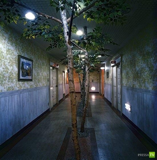 Японские отели для утех (12 фото)