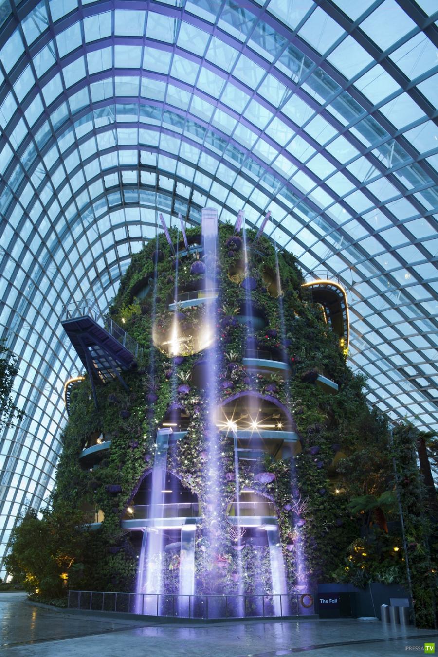 Зимние сады в Сингапуре (13 фото)