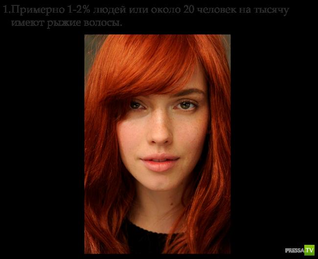 Интересные факты о рыжеволосых (14 фото)