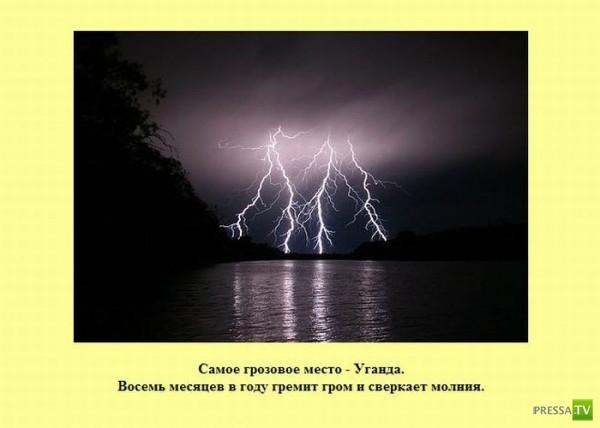 Интересные факты в картинках (27 фото)