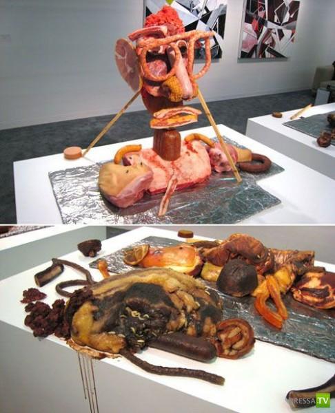 Мясные произведения искусства (11 фото)