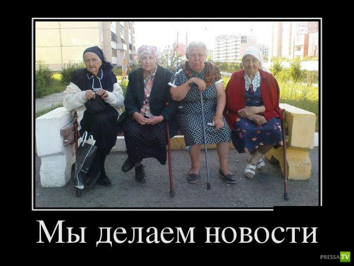 Демотиваторы на ноябрь 12 (30 фото)
