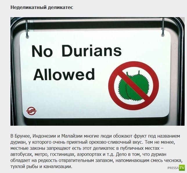 Странные и необычные законы разных стран мира (12 фото)