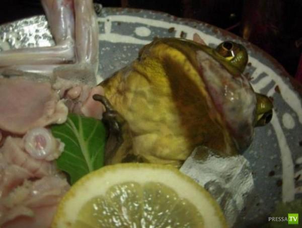 Самые отвратительные блюда... (9 фото)