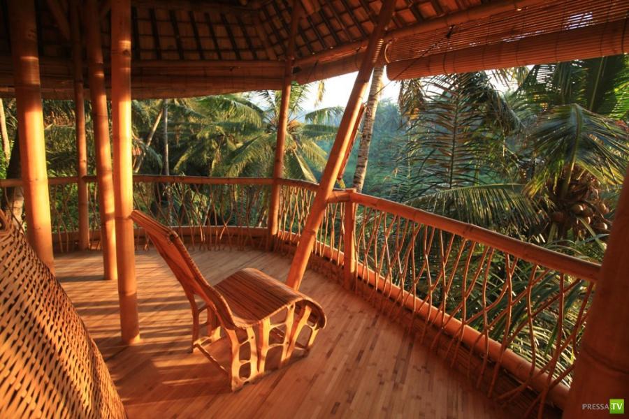 Бамбуковый отель в Индонезии на острове Бали (13 фото)