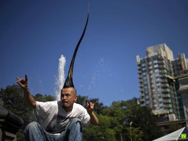 Самые необычные рекорды 2012 года (12 фото)
