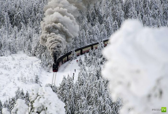 Прикольные фотографии, декабрь 12 (90 фото)