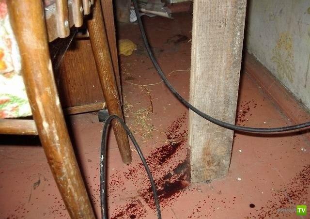 Кровавый дом (2 фото)