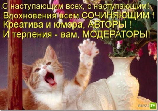 Прикольные котоматрицы, часть 2 (38 фото)