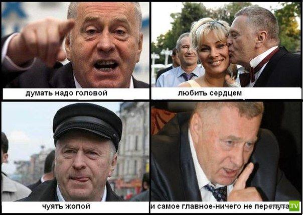 Жириновский прикол картинка