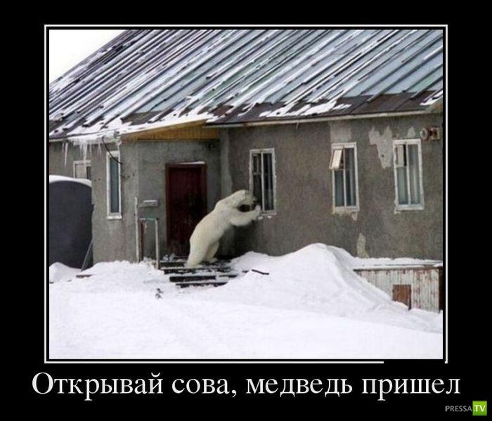 Демотиваторы на январь 10 (30 фото)
