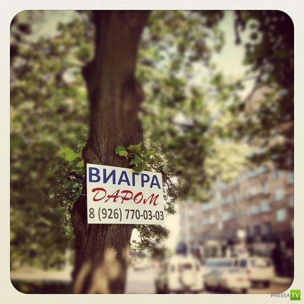 В Москве раздают виагру даром (6 фото)