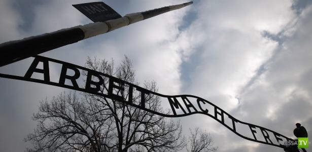 Холокост - это клей для обоев? (фото + 2 видео)