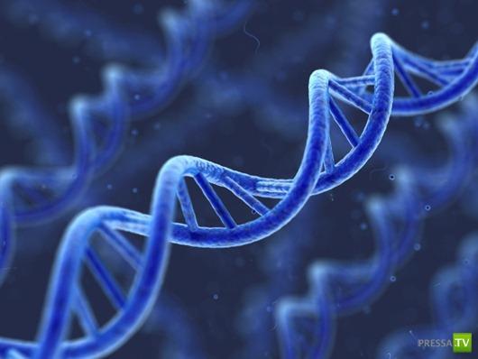 Генетика объяснила таинственные явления - интуицию, ясновидение ...