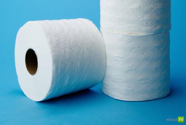 Краткий экскурс в историю туалетной бумаги...