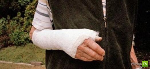 Самые причудливые страховые случаи (14 фото)