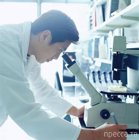 Новые направления науки 21 века (11 фото)