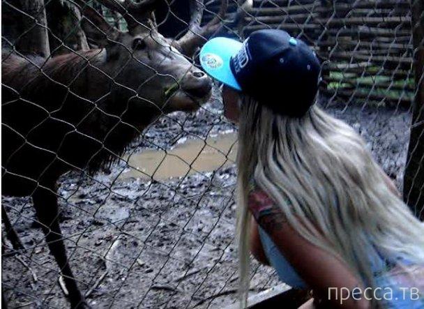 Странные новости - девушки кормят животных грудью (11 фото)