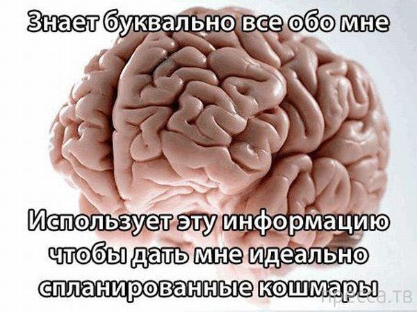 Злые игры нашего мозга (16 фото)
