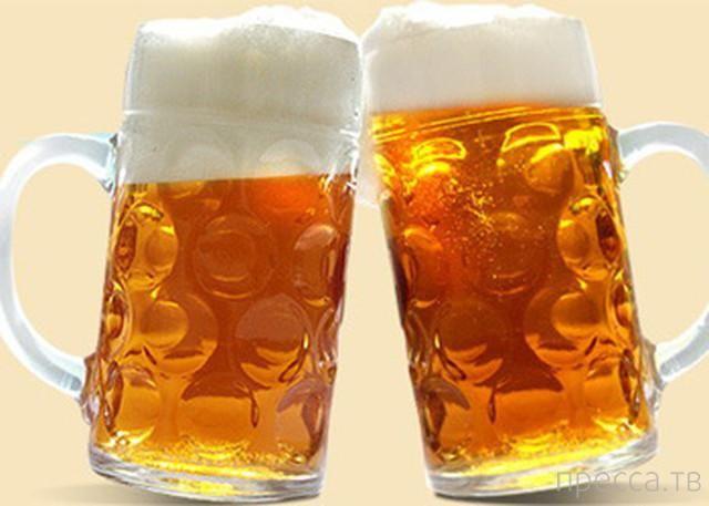 Все самое интересное о пиве... (17 фото)