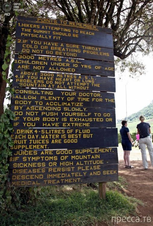 Восхождение на вершину Килиманджаро (20 фото)