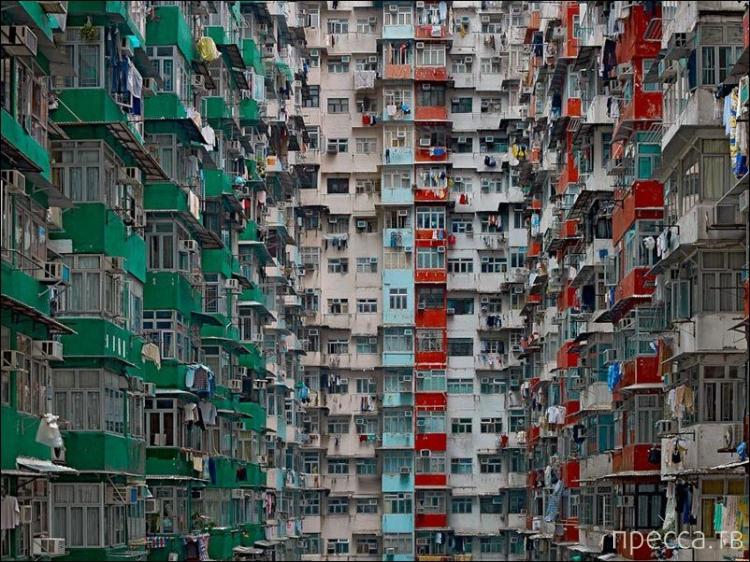 Жилые многоэтажки Гонконга (12 фото)
