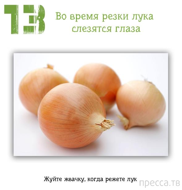 Полезные советы для дома (13 фото)
