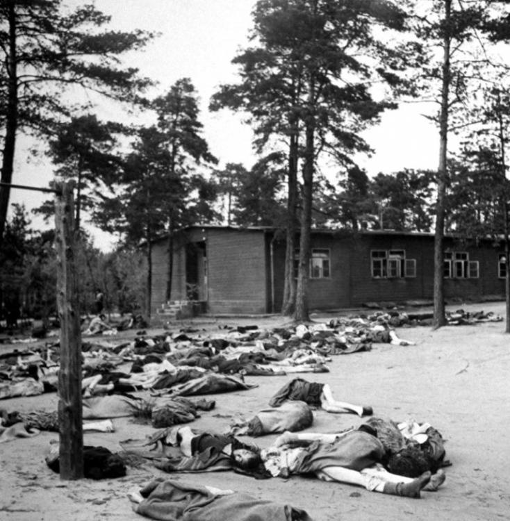 15 апреля 1945 года был освобожден лагерь Берген-Бельзен (21 фото)