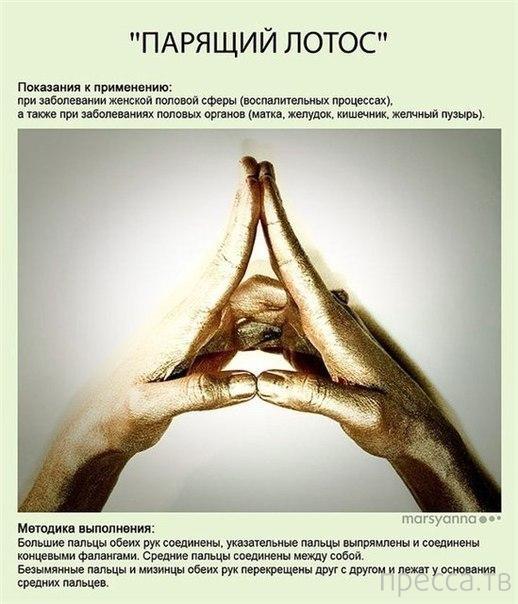 Мудры - йога для пальцев (10 фото)