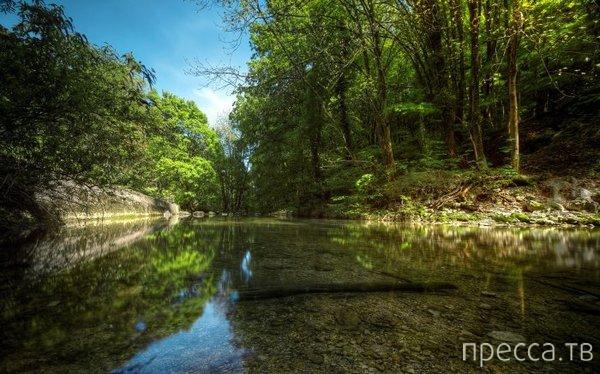 Умиротворяющие фотографии природы (21 фото)
