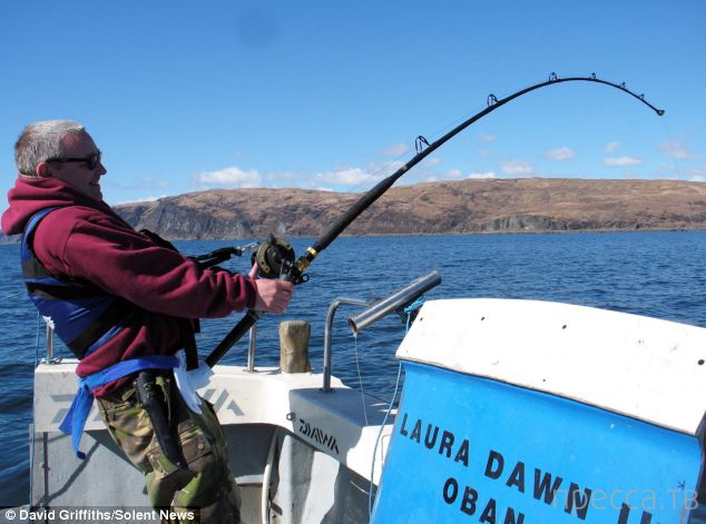 Рыбак поймал ската весом 110 килограммов (3 фото)