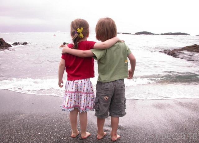 Интересные факты о дружбе (15 фото)