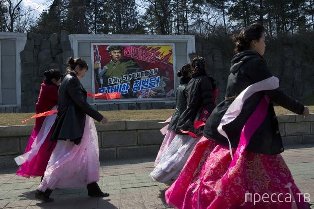 Какой была бы Ваша жизнь если бы вы родились в Северной Корее? (25 фото)