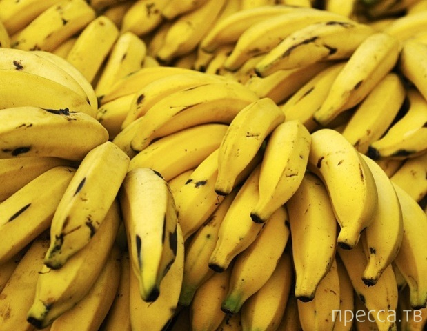 Интересное о бананах... (5 фото)