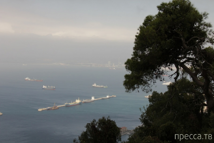 "Гибралтар - ""The Rock""  (18 фото)"